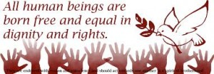 dignity free and equal